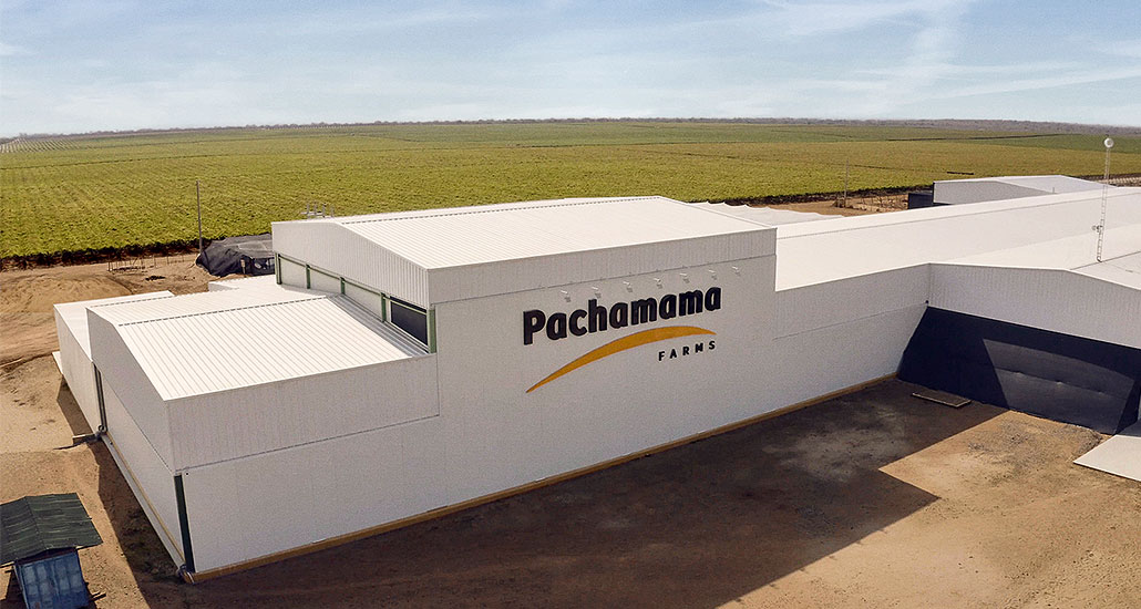 panchama