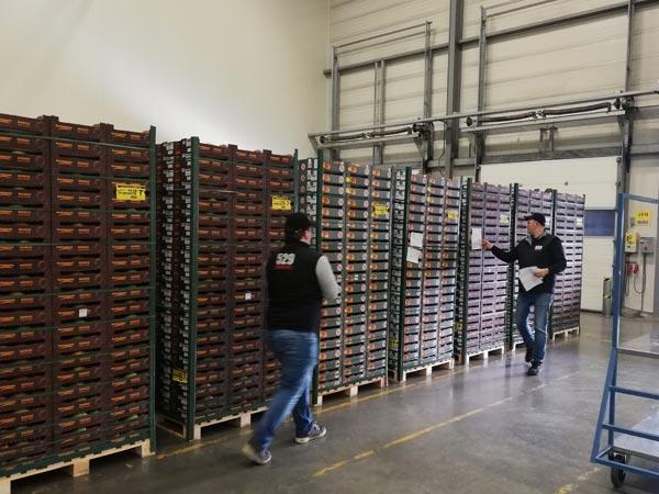 529 Logistic